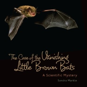 The Case of the Vanishing Little Brown Bats: A Scientific Mystery, a science book for grades 4-6